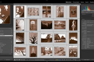 Online-Workshop Adobe Lightroom Classic