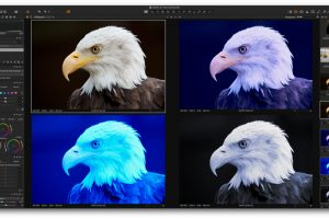 Capture One Pro Online-Workshop Einsteiger