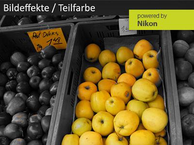 Nikon Z-System + DSLR   Der Aufbau-Fotoworkshop