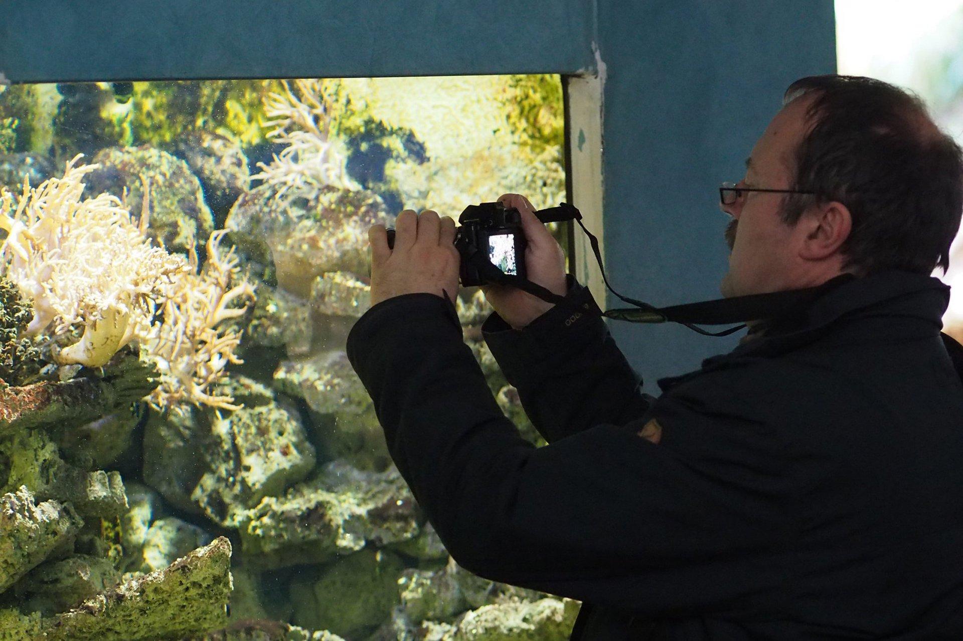 Olympus Tier- und Makrofotografie
