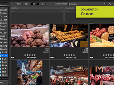 Online – Workshop Canon Digital Photo Professional Software