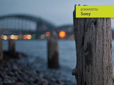 Online-Workshop Sony-Systemkameras richtig einstellen