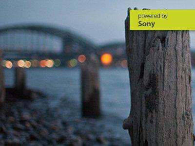 Online-Workshop Sony-Systemkameras richtig einstellen