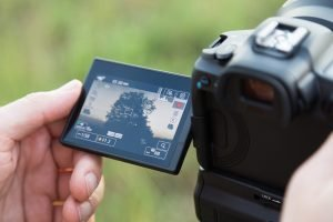 Webinar Canon EOS R System
